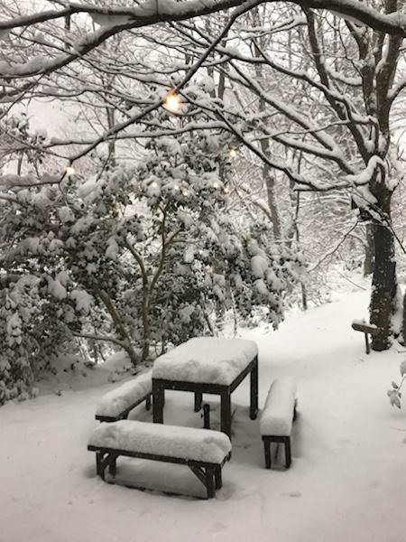 明日(29日)は積雪のため臨時休業です